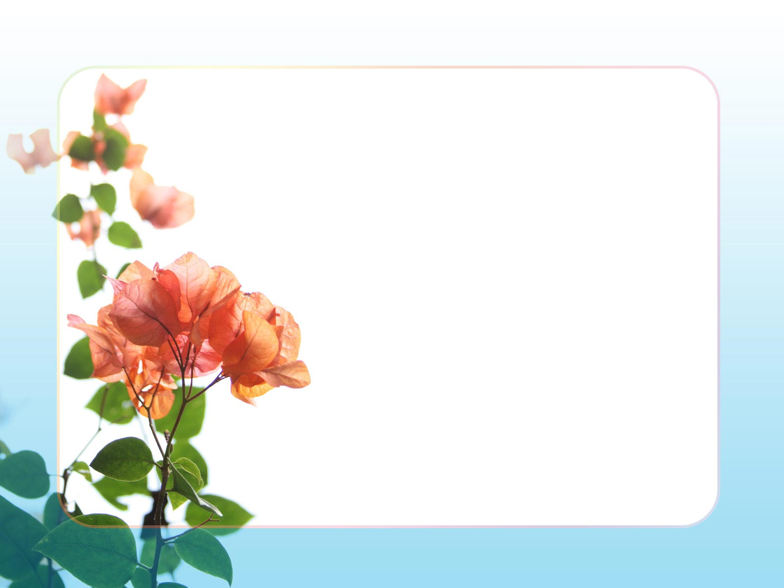 無料で使えるフリー素材 フレーム枠イラスト