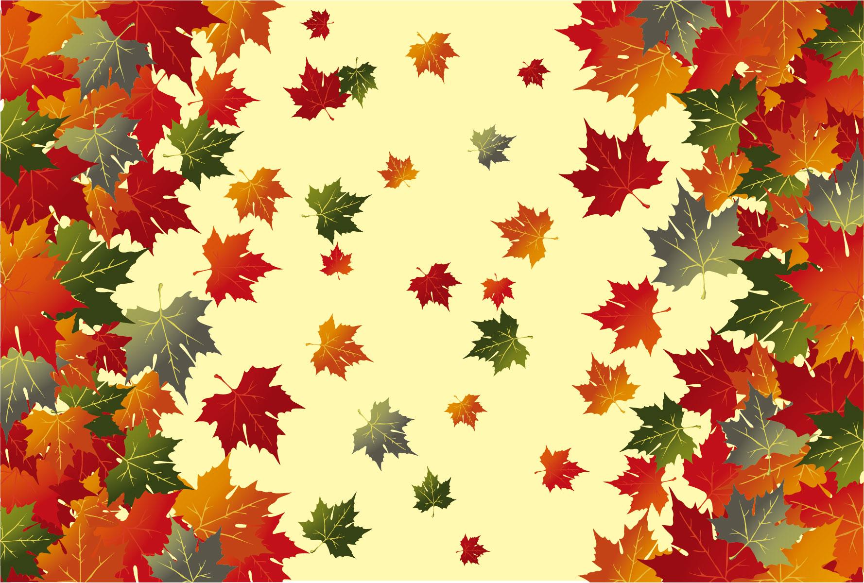 秋の画像サンプル-かえでの紅葉