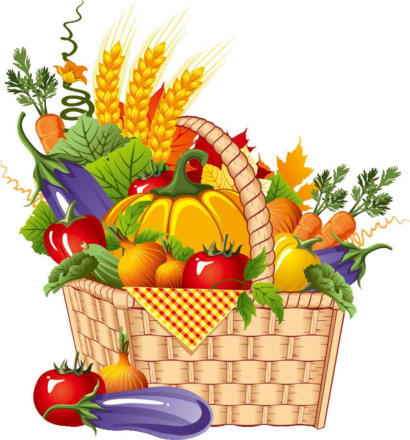 秋の画像サンプル-秋の野菜-バスケット