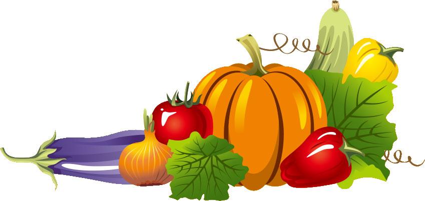 秋の画像サンプル-秋の野菜