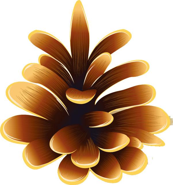 秋の画像サンプル-松ぼっくり