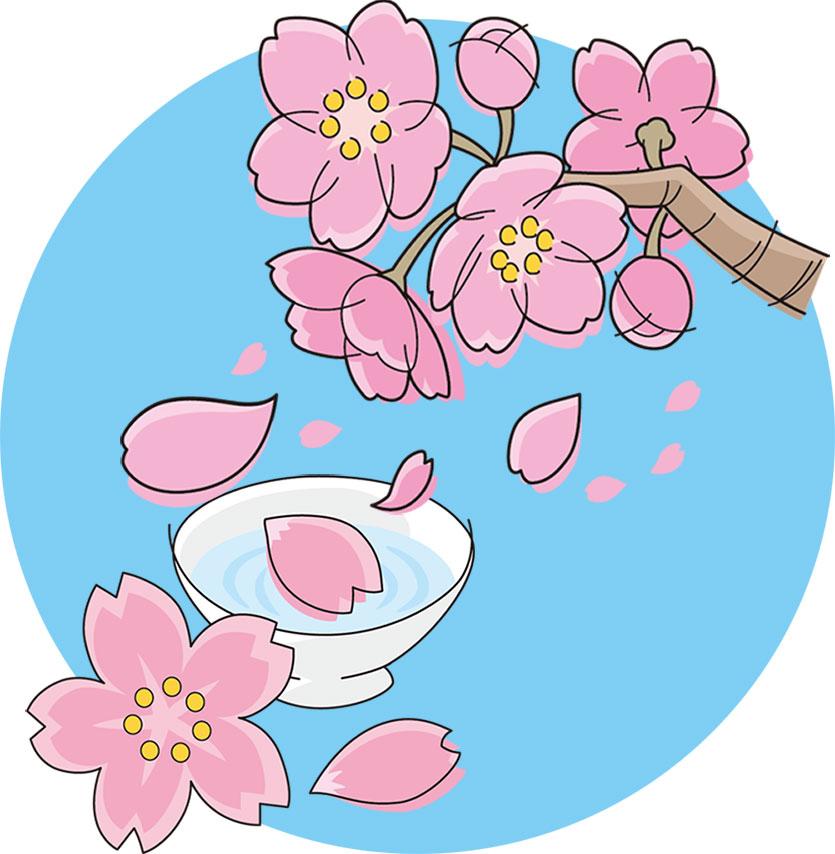 画像サンプル-花見のイメージ