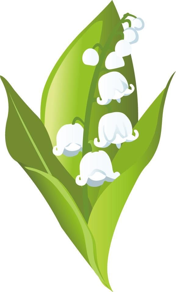 春の画像サンプル-鈴蘭の花-ポップ