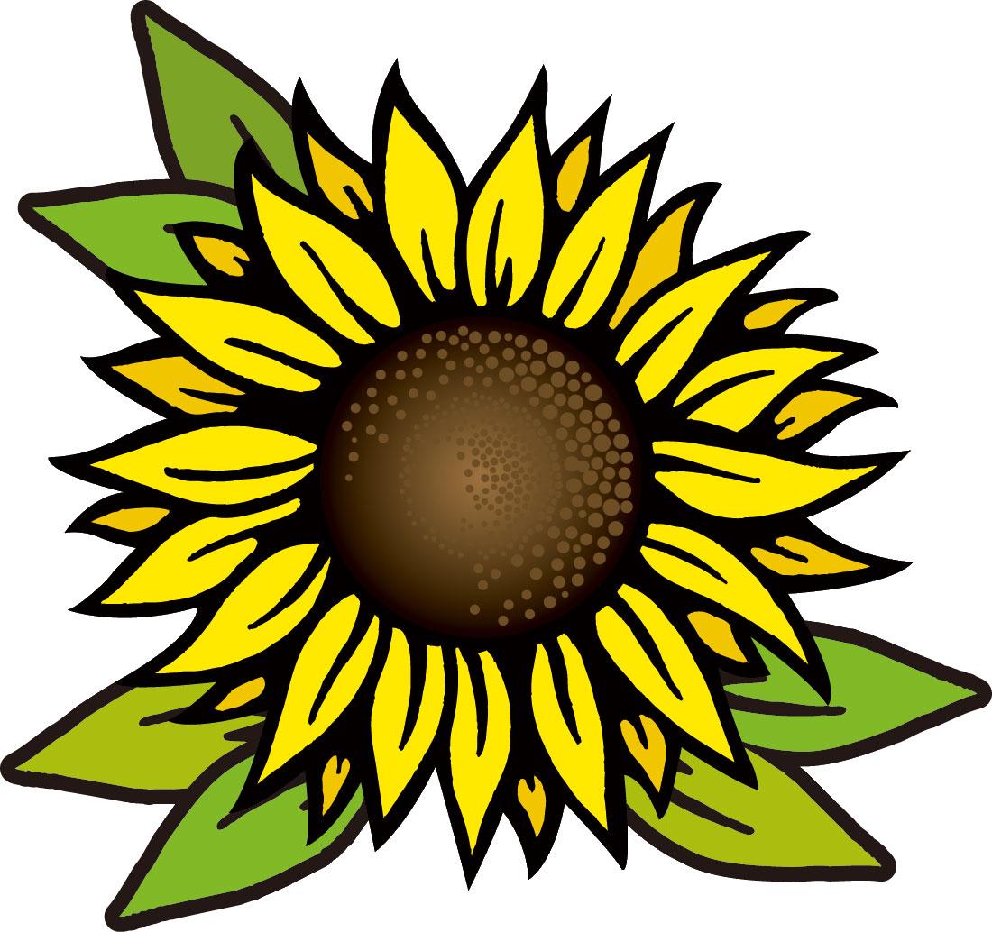 夏の無料デザイン画像,向日葵