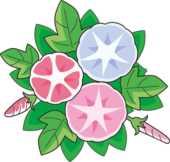 夏のフリーイラスト素材-朝顔の花・赤青ピンク