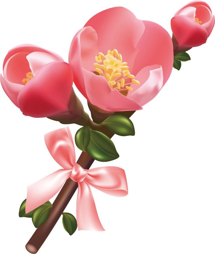 冬の画像サンプル-梅の花-リアル
