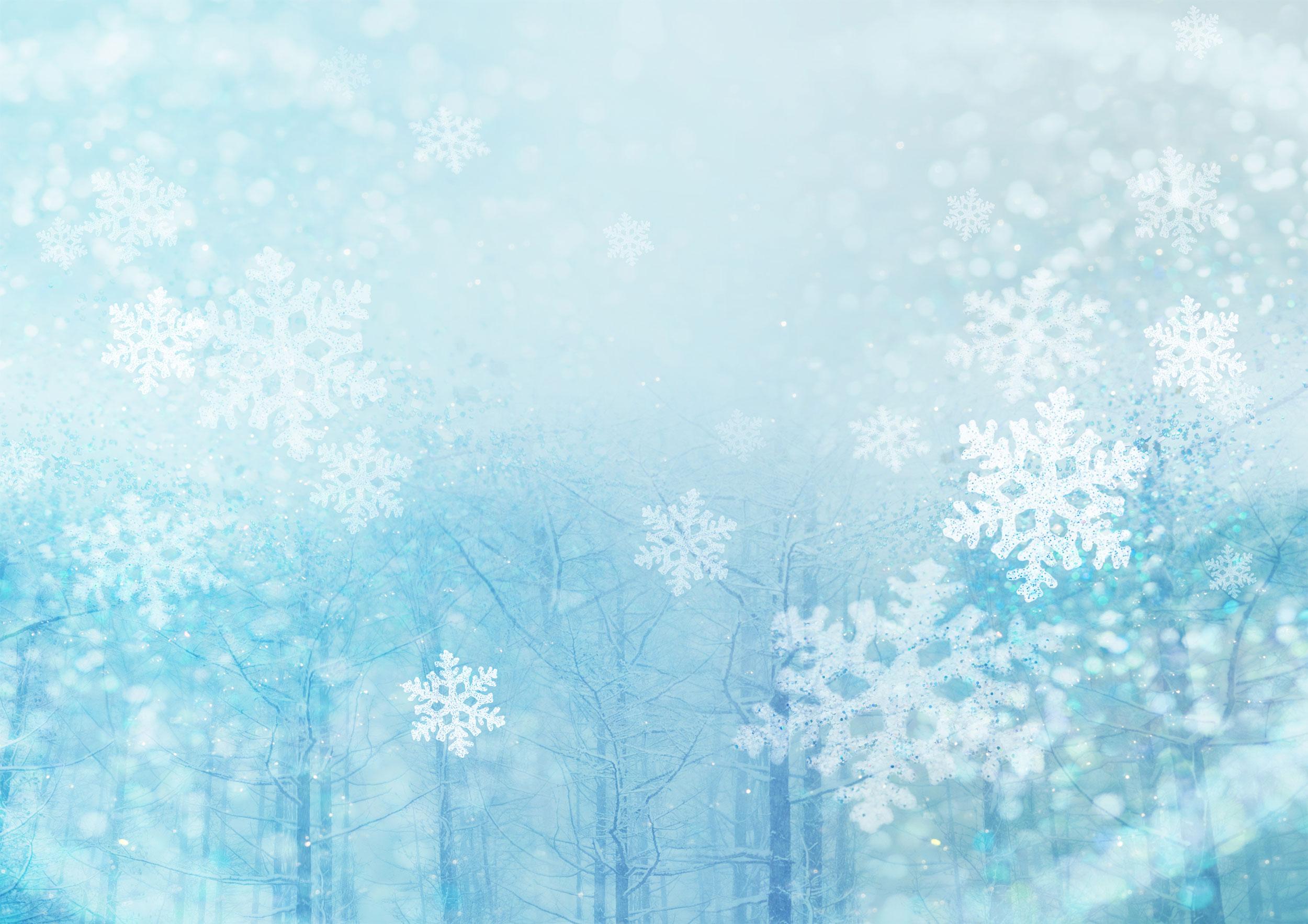 冬のイラストno.188『雪降る林』/無料のフリー素材集【花鳥風月】